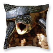 Turtle With His Mouth Wide Open  Throw Pillow