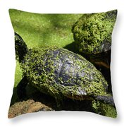 Turtle Yoga Throw Pillow