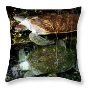 Turtles Throw Pillow