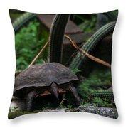 Turtles Butt Throw Pillow
