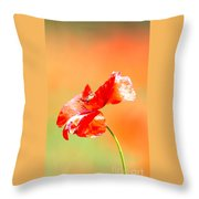 Tuscan Poppy Throw Pillow