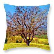 Tuscan Splendor Throw Pillow