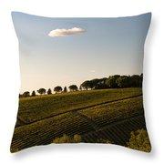 Tuscan Vineyard Throw Pillow