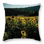 Tuscany - Sunflowers At Sunset Throw Pillow