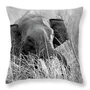 Tusker In The Grass Throw Pillow