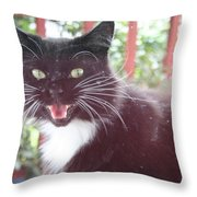 Can You Hear Me Meow? Throw Pillow