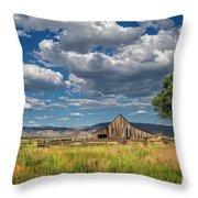 Twaddle-pedroli Ranch Throw Pillow