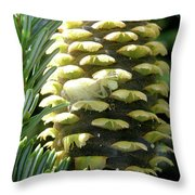 Twelfth Story Living Throw Pillow