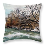 Twelve Mile Creek Throw Pillow