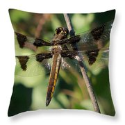 Twelve Spotted Skimmer Dragonfly Throw Pillow
