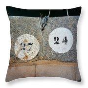 Twenty Four Throw Pillow