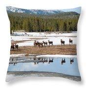 Twice The Elk Throw Pillow