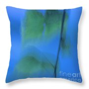 Twig And Leaf - D009634a Throw Pillow