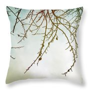 Twigs And Winter Sky Two Throw Pillow