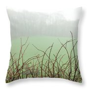 Twigs In Mist Throw Pillow
