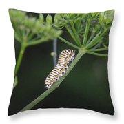 Twilight Caterpillar Throw Pillow