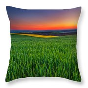 Twilight Fields Throw Pillow