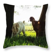 Twilight On The Farm Throw Pillow