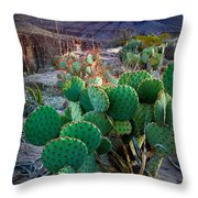 Twilight Prickly Pear Throw Pillow