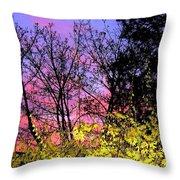 Twilight Time Throw Pillow