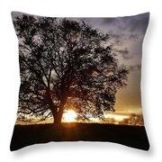 Twilight's Embrace Throw Pillow