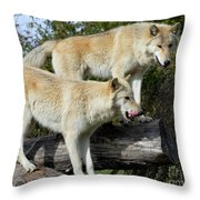 Twin Blond Wolves Throw Pillow