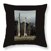 Twin Cypress Throw Pillow
