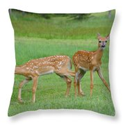 Twin Fawns Playing Throw Pillow