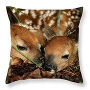 Twin Newborn Fawns Throw Pillow