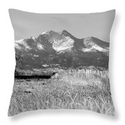 Twin Peaks Rustic Fence Throw Pillow