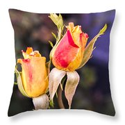 Twin Roses Of Love Throw Pillow