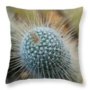 Twin Spined Cactus Throw Pillow