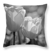 Twin Tulips B/w Throw Pillow