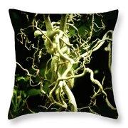 Twining Willow Throw Pillow