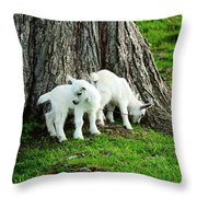 Twins At Play Throw Pillow