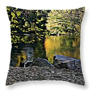 Twins Of Duality Throw Pillow