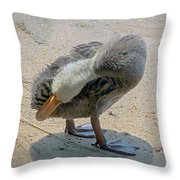 Twist And Turn Throw Pillow