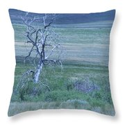 Twisted And Free Throw Pillow