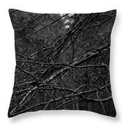 Twisted And Wet Throw Pillow