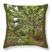 Twisted Privet Throw Pillow