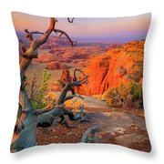 Twisted Remnant Throw Pillow