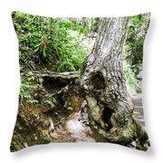 Twisted Tree Smoky Mountains Throw Pillow