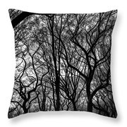 Twisted Trees Throw Pillow