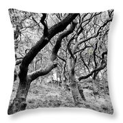Twisted Woodland Throw Pillow