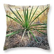 Twisted Yucca Throw Pillow