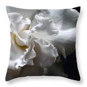 Twisting Folds Throw Pillow