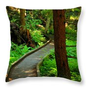 Twisting Path Through The Woods Throw Pillow