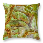 Twists In Time Throw Pillow