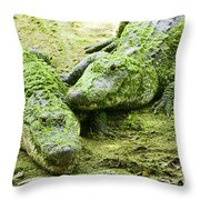 Two Alligators Throw Pillow by Garry Gay