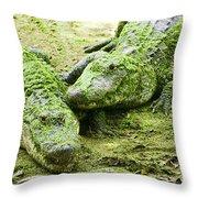 Two Alligators Throw Pillow